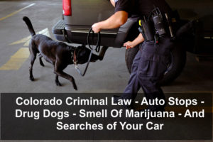 Colorado Criminal Law - Auto Stops - Drug Dogs - Smell Of Marijuana - And Searches of Your Car-1